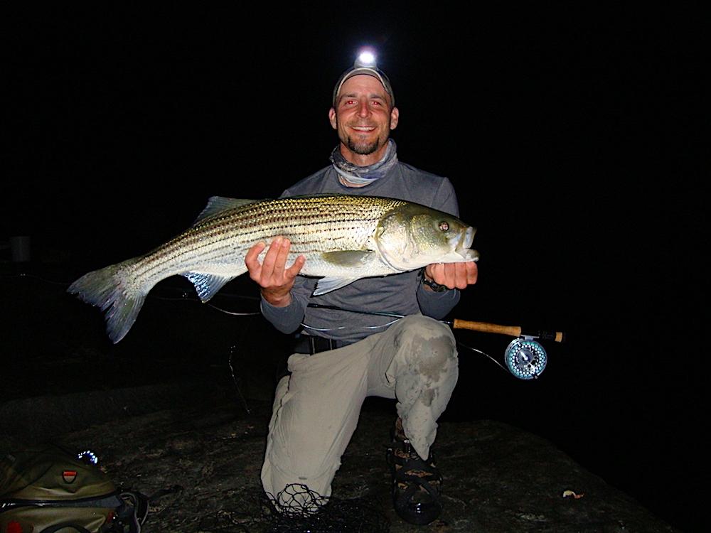 Nighttime Striper